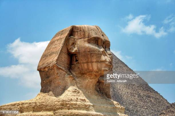 view of the sphinx, egypt - the sphinx stock pictures, royalty-free photos & images