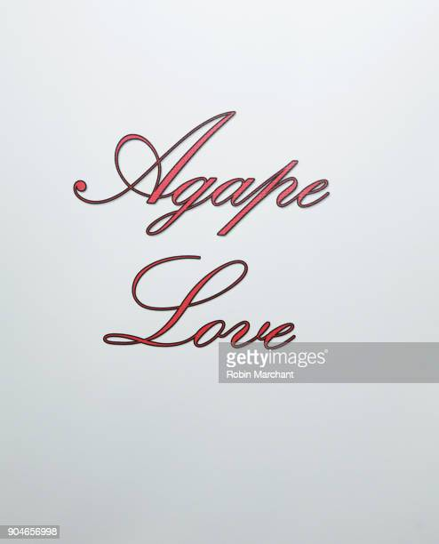 A view of the step and repeat at the Agape Love Musical Stage Play on January 13 2018 in Milwaukee Wisconsin