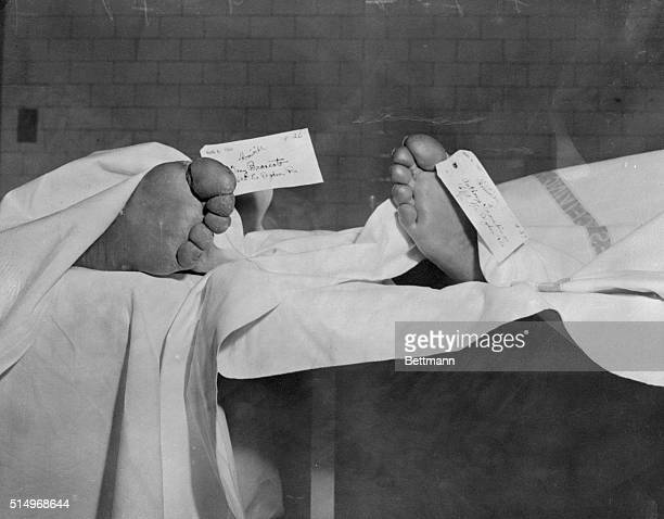 View of the toes of the bulletriddled bodies of Tony Trombino and Tony Brancato both underworld figures are shown after they were found in a parked...