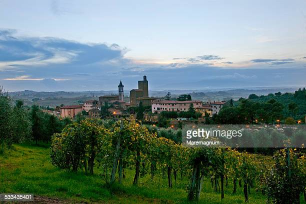 view of the town of vinci - leonardo da vinci stock-fotos und bilder
