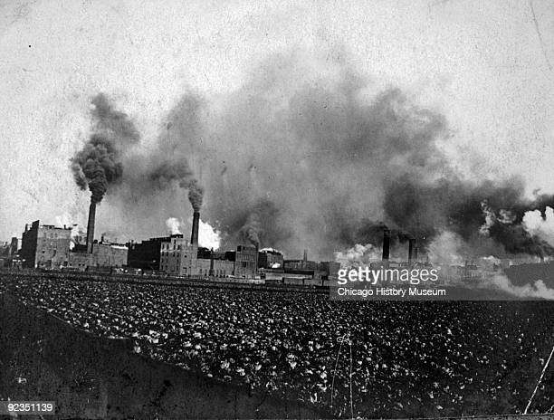 View of the Union Stockyards, from Ashland Avenue, showing cabbages grown in the vacant lots, and the Packingtown skyline, with its stacks spewing...
