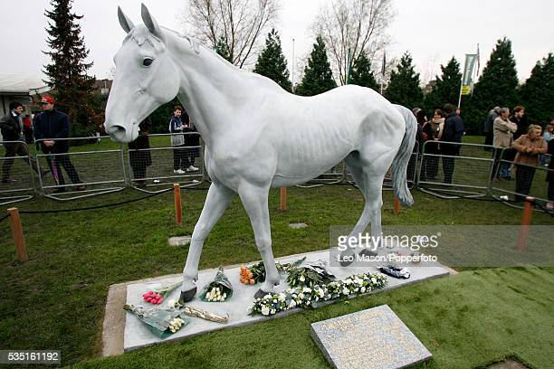 View of the unveiling ceremony of the memorial to racehorse Desert Orchid at Kempton Park racecourse near London on 27th December 2006 Desert...