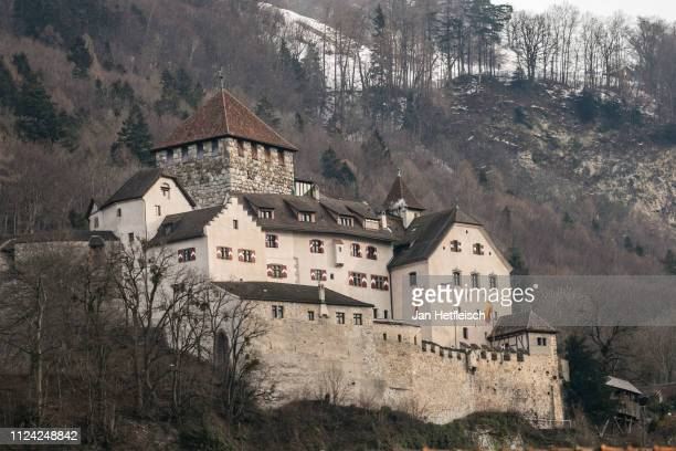 View of the Vaduz Castle on January 23, 2019 in Vaduz, Liechtenstein. Liechtenstein celabrates the 300th anniversary of the founding of the...
