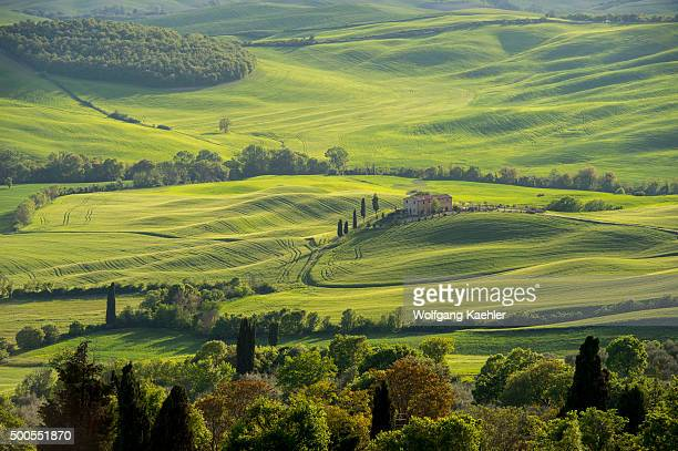 View of the Val d'Orcia near Pienza in Tuscany, Italy with Italian cypress trees and farm house.