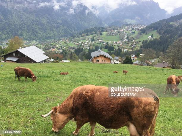 A view of the valley taken a few kilometers away chalet from where Jose Antonio Urrutikoetxea Bengoetxea also known as Josu Ternera one of the most...