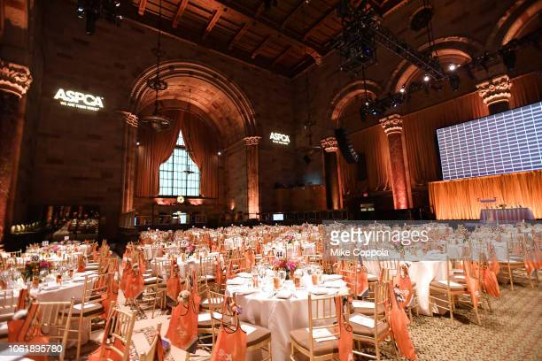 A view of the venue at the ASPCA Hosts 2018 Humane Awards Luncheon at Cipriani 42nd Street on November 15 2018 in New York City