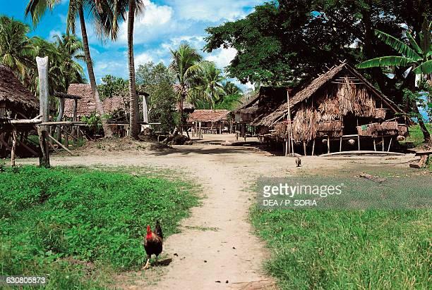 View of the village of Tambonum near the Sepik River Papua New Guinea
