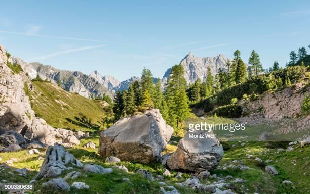 view of the watzmann, hiking trail to the koenigssee and the wassereralm, near the kaerlingen house, berchtesgaden alps, national park berchtesgaden, upper bavaria, bavaria, germany - watzmann massif stock photos and pictures