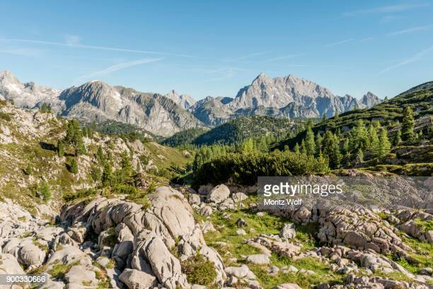 view of the watzmann, hiking trail to the koenigssee and the wassereralm, near the kaerlinger hausl, berchtesgaden national park, bavaria, germany - watzmann massif stock photos and pictures