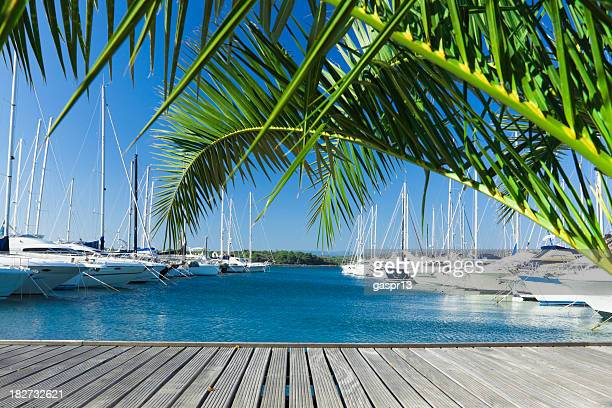 a view of the yachts dock in the pier during summer - marina stock pictures, royalty-free photos & images