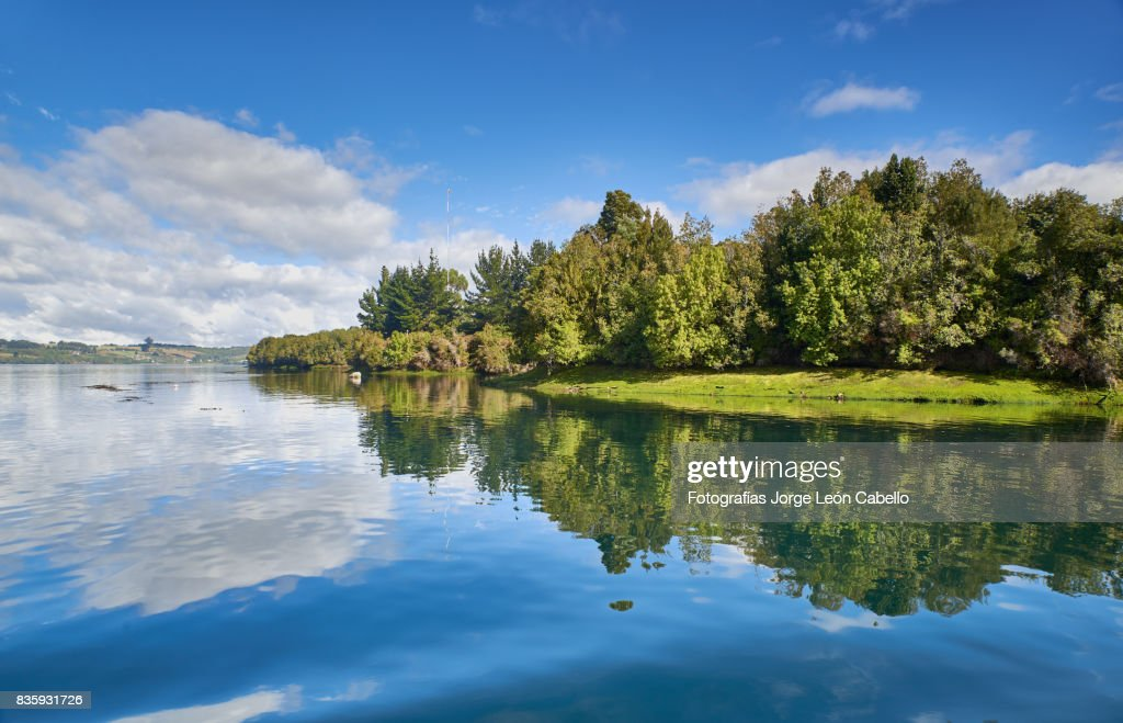 A view of the Yal canal shores with forest. : Stock Photo