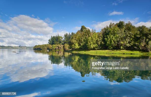 a view of the yal canal shores with forest. - chilean lake district stock photos and pictures