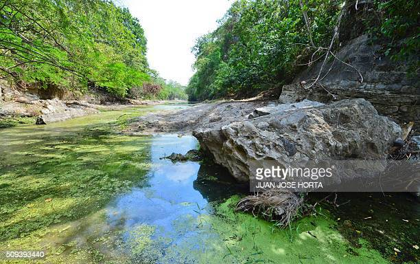 View of the Yeguas River tributary of the Magdalena River in Honda Tolima department on February 9 2016 Affected by El Nino the Magdalena Colombia's...
