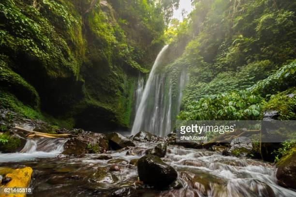 View of Tiu Kelep waterfall near Rinjani, Senaru, Lombok, Indonesia.