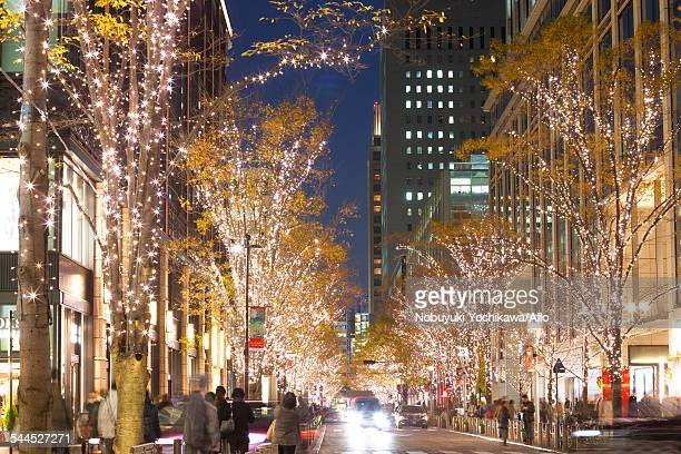 view of tokyo, japan - イルミネーション ストックフォトと画像