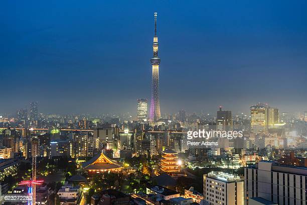 View of Tokyo skyline and Sky Tree at Night