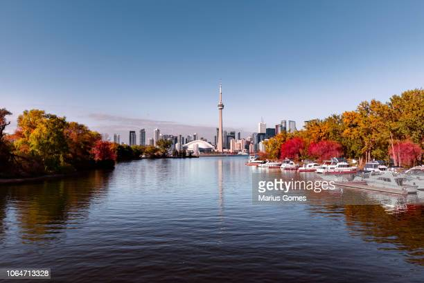 view of toronto skyline from lake with seasonal autumn trees - toronto stock pictures, royalty-free photos & images