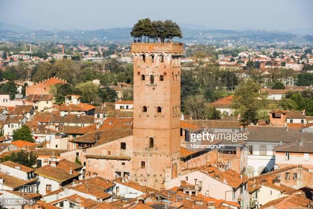 View of Torre (tower) Guinigi