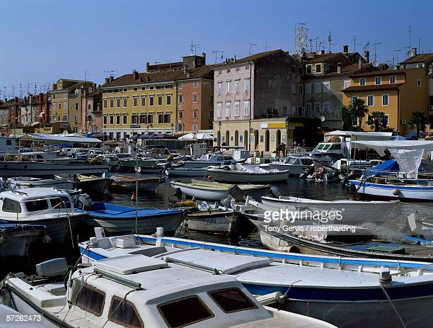 view of town over harbour, rovinj, istria district, croatia, europe - datorport bildbanksfoton och bilder