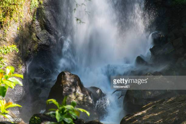 view of trafalgar falls splashing on rocks in morne trois pitons national park, dominica - dominica stock pictures, royalty-free photos & images