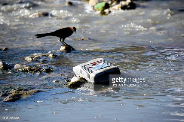 View of trash in the San Francisco River which flows into Lake Atitlan in the highlands in Panajachel municipality Solola department 65 km west of...