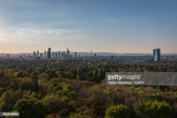 view of trees and buildings against sky during sunset - frankfurt main stock pictures, royalty-free photos & images