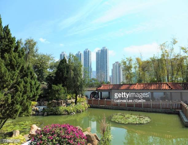 view of trees by lake against urban skyline - lucinda lee stock photos and pictures