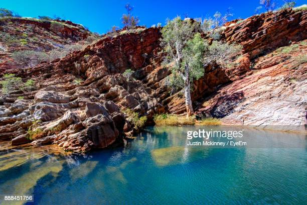 view of trees on cliff against blue sky - western australia stock pictures, royalty-free photos & images