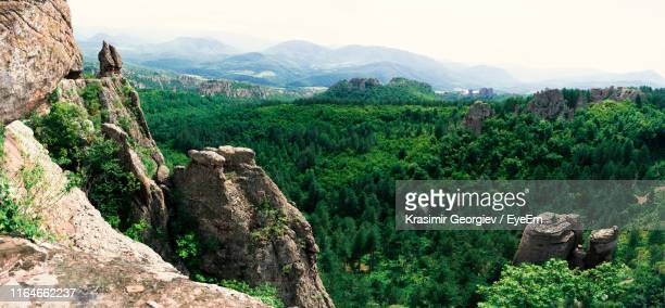 view of trees on landscape against mountain range - krasimir georgiev stock photos and pictures