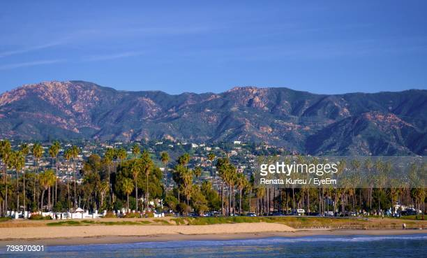 view of trees with mountain range in background - santa barbara stock photos and pictures
