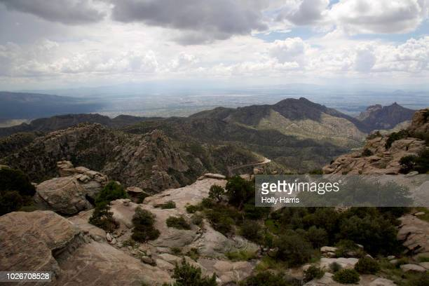 view of tucson from windy point on mt. lemmon - mt lemmon stock photos and pictures