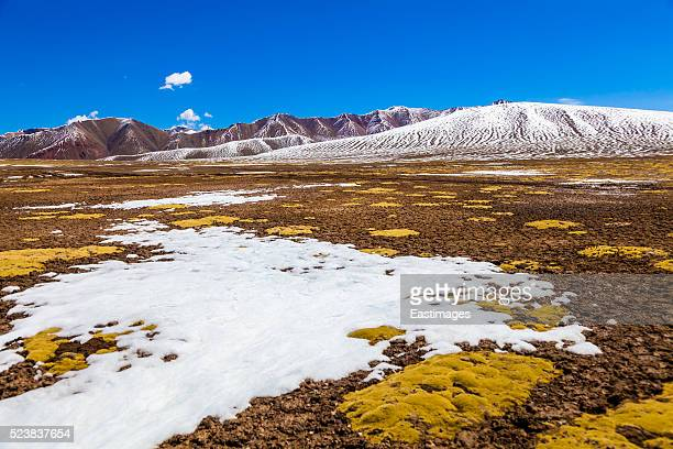 view of tundra on qinghai-tibet plateau - tundra stock pictures, royalty-free photos & images