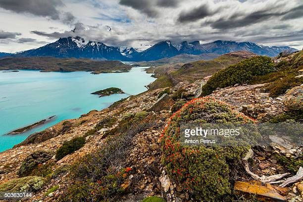 View of turquoise lake Pehoe. Torres del Paine, Chile