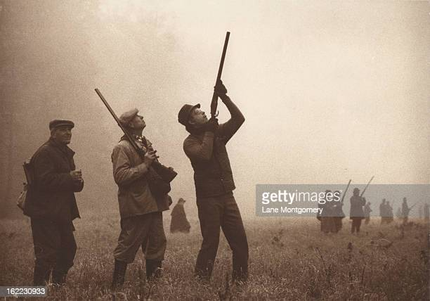 View of two groups of hunters taking aim while on a pheasant shoot in Czechoslovakia 1995
