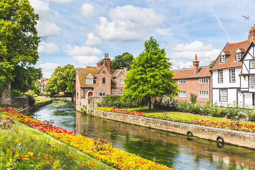 View of typical houses and buildings in Canterbury, England 609087364