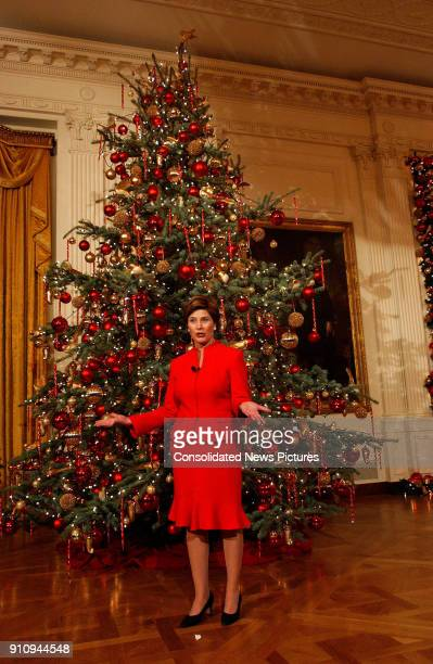 View of US First Lady Laura Bush as she talks in front of a Christmas tree in the White House's East Room, Washington DC, December 5, 2002.
