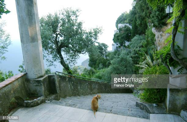 A view of 'Villa la Rondinaia' looking off the Amalfi's coast is seen from the Italian residence of the American writer Gore Vidal August 7 2004 in...