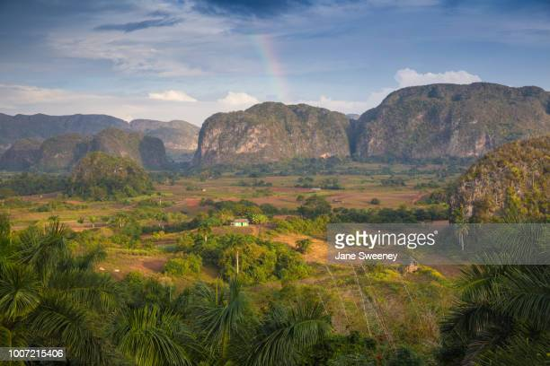 view of vinales valley, unesco world heritage site, vinales, pinar del rio province, cuba, west indies, caribbean, central america - valley stock pictures, royalty-free photos & images