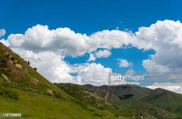 view of wasatch mountain range as seen from red butte garden in downtown salt lake city, ut - provo stock pictures, royalty-free photos & images