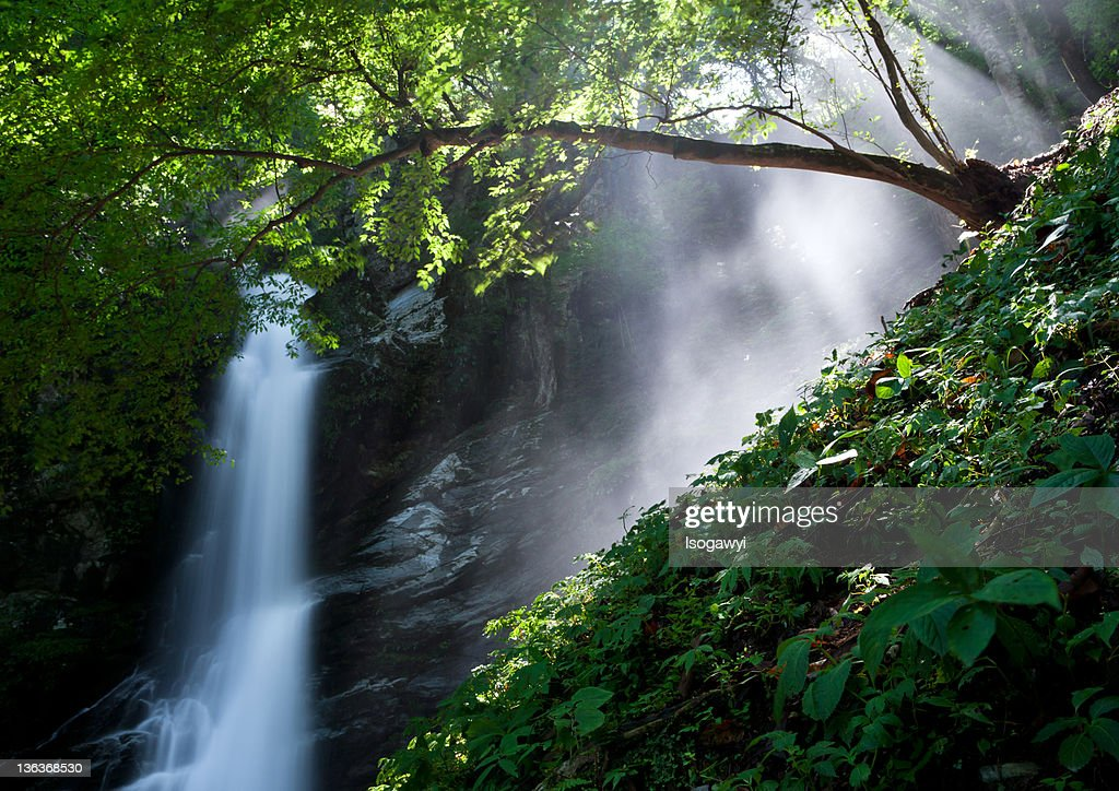 View of water fall : ストックフォト
