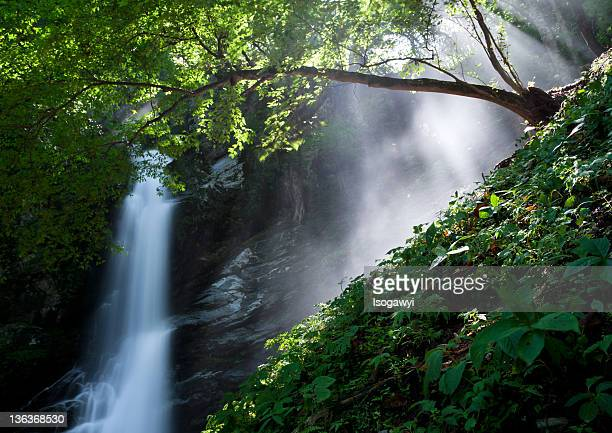 view of water fall - isogawyi stock pictures, royalty-free photos & images