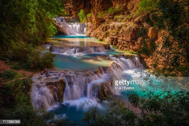 view of waterfall along trees - grand canyon village stock photos and pictures