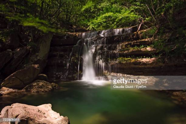 view of waterfall in forest - giusti claudia stock pictures, royalty-free photos & images