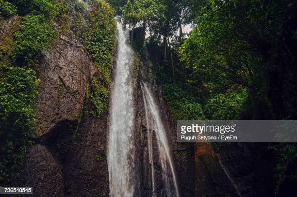 view of waterfall in forest - bogor stock pictures, royalty-free photos & images