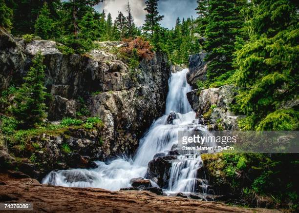view of waterfall in forest - steve matten stock pictures, royalty-free photos & images