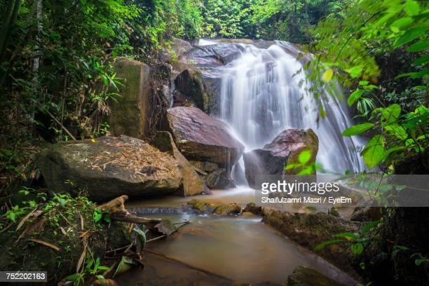 view of waterfall in forest - shaifulzamri eyeem stock pictures, royalty-free photos & images