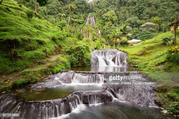 view of waterfall in forest - colombia stock pictures, royalty-free photos & images