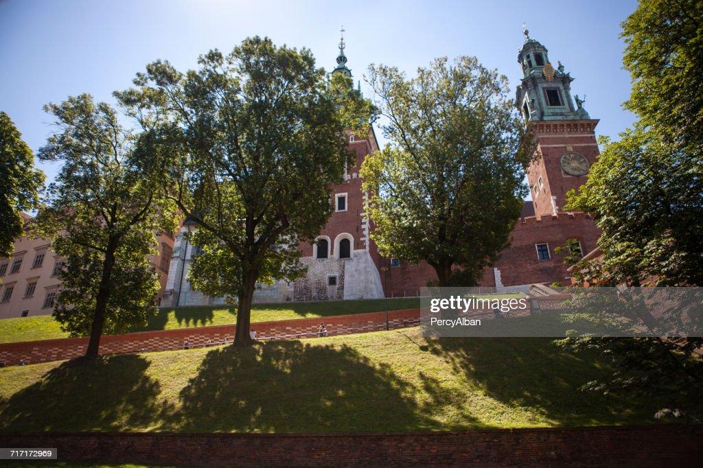 View Of Wawel Castle Krakow ス...