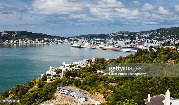view of wellington - nazar stock photos and pictures