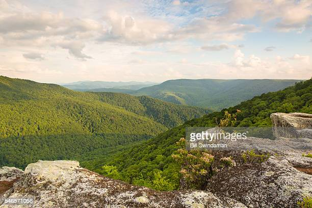 view of west virginia mountains from table rock in canaan valley, monongahela national forest - national forest stock pictures, royalty-free photos & images